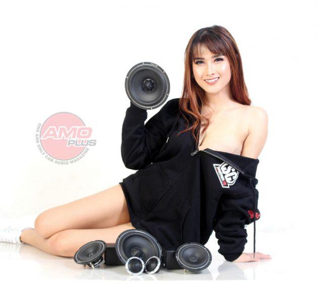 Speaker ARC